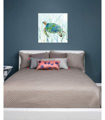 "icanvas ""sea turtle swim ii"" by carol robinson gallery-wrapped canvas print"