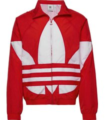 bg trefoil tt tunn jacka röd adidas originals