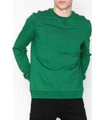 minimum sejr tröjor grön