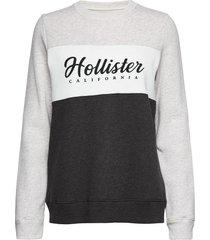 colorblocked logo crew sweat-shirt tröja grå hollister