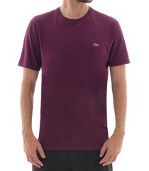 lacoste logo t-shirt - bordeaux               th6709-fy5