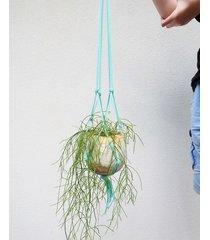 doniczka eccentric plant