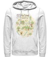 fifth sun men's 100 acre map long sleeve hoodie