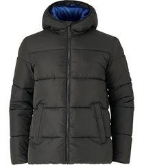 jacka jorknight puffer jacket