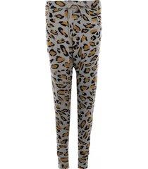 spodnie leo