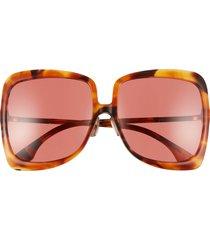 women's fendi 62mm oversize square sunglasses - brown yellow havana/ red