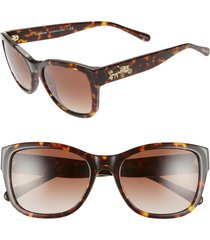 women's coach 55mm cat eye sunglasses -