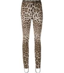 dolce & gabbana legging em animal print - estampado