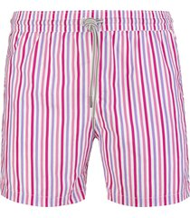 capri code pink and purple thin striped swimsuit