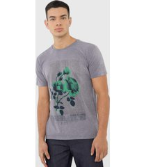 camiseta calvin klein jeans floral cinza