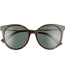 valentino rockstud 53mm gradient cat eye sunglasses in havana/green solid at nordstrom