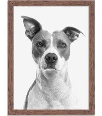 quadro decorativo animal meu melhor amigo cachorro preto e branco madeira - médio