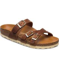franca d-buckle shoes summer shoes flat sandals brun birkenstock
