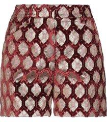 true royal shorts & bermuda shorts