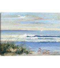 beachcombers by sally swatland canvas art print