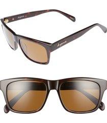women's brightside wilshire 55mm polarized sunglasses - dark tortoise/ brown polar