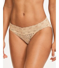 halo lace bikini brief