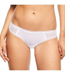 chantelle courcelles brazilian brief