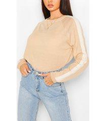 stripe fine knit sweater, camel