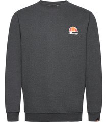 el diveria sweat-shirt tröja grå ellesse