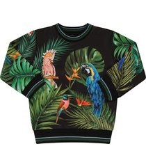 dolce & gabbana black babyboy sweatshirt with exotic birds