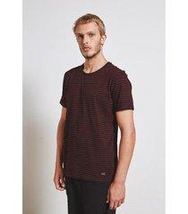 camiseta color stripes armadillo masculina - masculino