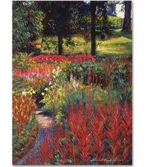 "david lloyd glover 'nature's dreamscape' canvas art - 24"" x 32"""