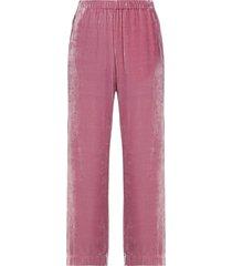 velvet by graham & spencer pants