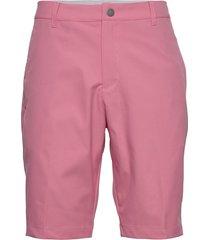 jackpot short shorts sport shorts roze puma golf