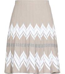 d.exterior lurex skirt