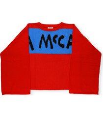 stella mccartney sweater with pencil print