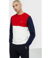lacoste sweatshirt tröjor red