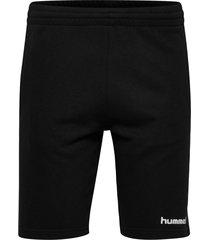 go bermuda shorts