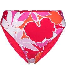high rise bikinitrosa rosa seafolly