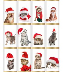 12-piece christmas cats in hats slim milk chocolate bars