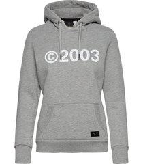 2003 hood hoodie trui grijs superdry