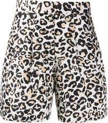 ermanno ermanno high-waisted leopard print shorts - brown