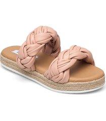 kirsi sandal shoes summer shoes flat sandals rosa steve madden