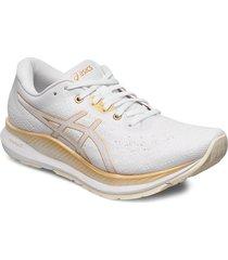 evoride shoes sport shoes running shoes vit asics
