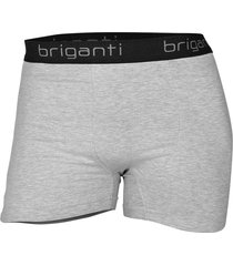 boxer gris briganti hombre