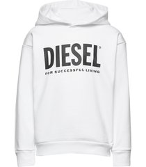 sdivision-logo over sweat-shirt hoodie trui wit diesel