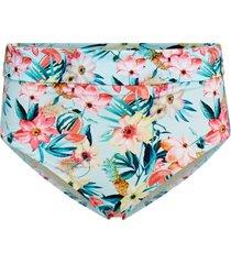 bikinitrosa aloha fold brief