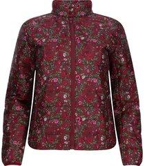 chaqueta mujer acolchada estampada vino color vino, talla s