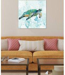 "icanvas ""sea turtle swim i"" by carol robinson gallery-wrapped canvas print"