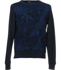 blauer sweatshirts