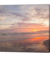 beach wood white by susan bryant canvas art