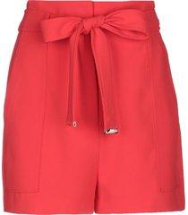 marciano shorts & bermuda shorts