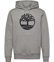 core logo p/o hood bb hoodie trui grijs timberland