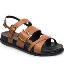 stb-joy multi strap l shoes summer shoes flat sandals brun shoe the bear