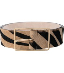 b-low the belt milla zebra print belt - brown